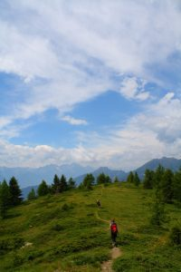 Pictures of Cheneil - Trees, landscape, mountain