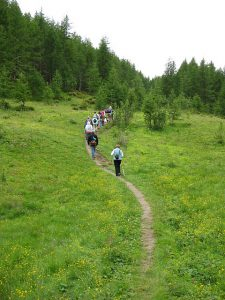 Pictures of Cheneil - Hiking trail