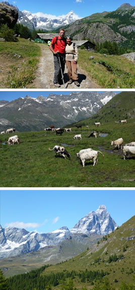 Yoga, hiking and painting in the Italian Alps, Yogagaia 2010
