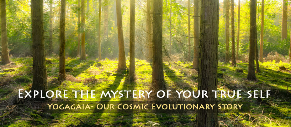 Where are we coming from ? Explore the mystery of your true self.
