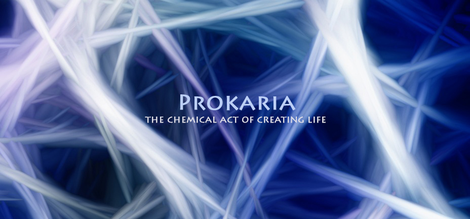 Prokaria, the chemical act of creating life, Yogagaia's sessions